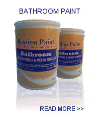 bathroom paint - read more